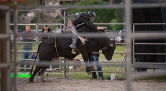 Bikes&Bulls fly high bull rider doing his thing