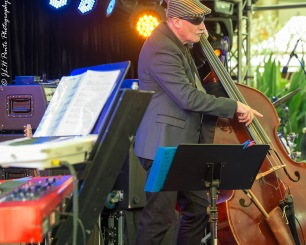 Jazz at Broadbeach Bass player
