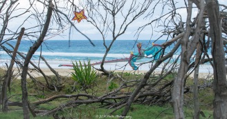 Star kite, watching over Dragon kite